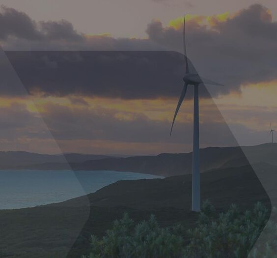 A coastal wind farm generating renewable energy